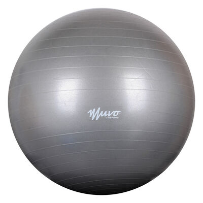 Pelota Gym Muvo