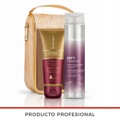 Defy Damage Duo Protect 300 ml