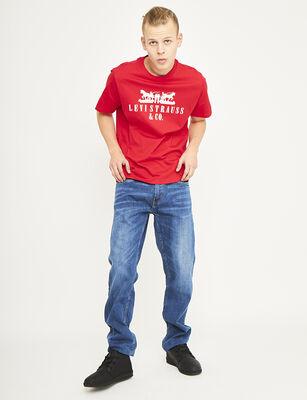 Jeans Regular Hombre Levis