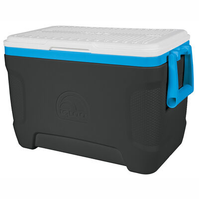 Cooler Igloo Contour 25L