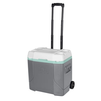 Cooler Igloo Profile 28 lt con ruedas gris