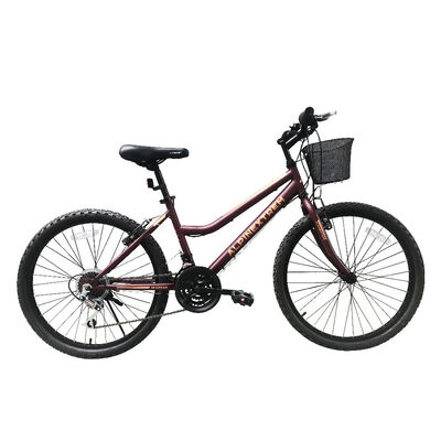 Bicicleta Alpinextrem City bike Urban Aro 24 Burgundry