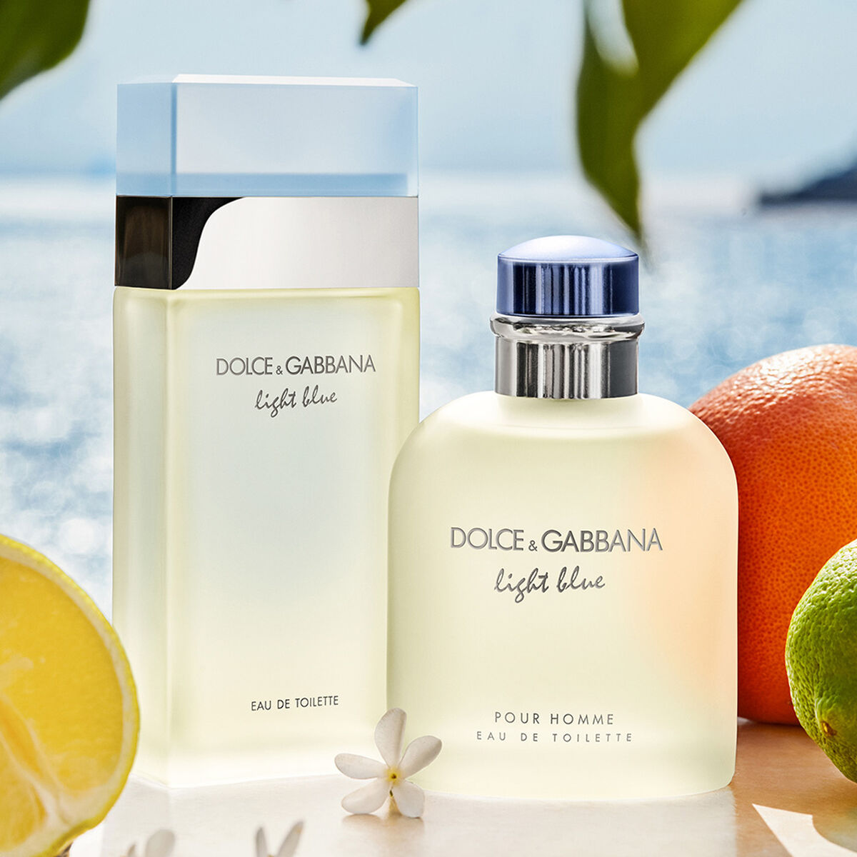 Set Perfume Light Blue EDT 100 ml + Body Cream + Perfumero 10 ml