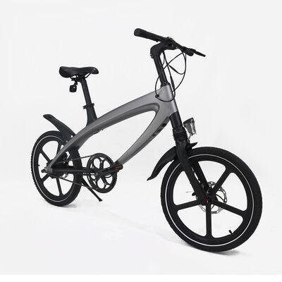 Bicicleta Eléctrica Egobike EBK100
