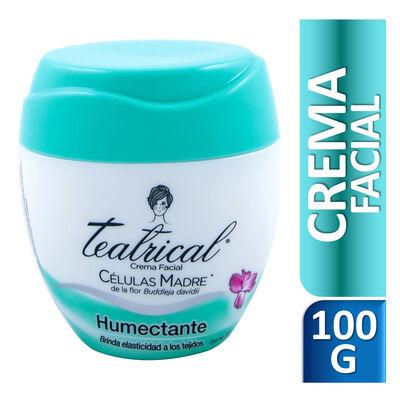 Teatrical Crema Facial Humectante 100 gr