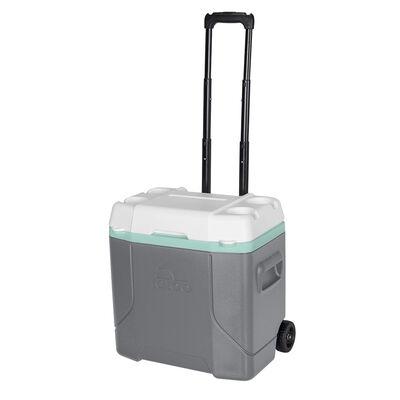 Cooler Igloo Profile 28 lt con ruedas gris